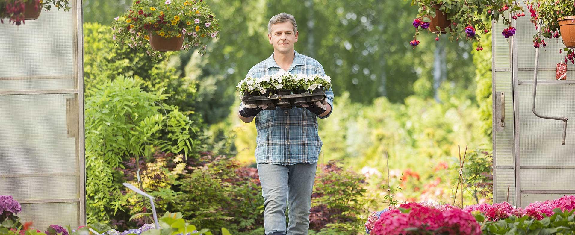 Gardeners Eltham